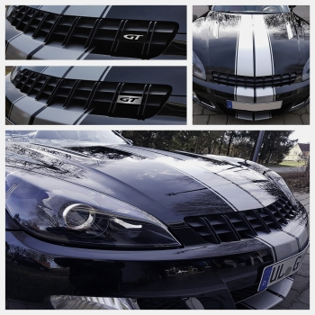 Sports grille Saturn Sky -  ready-to-mount